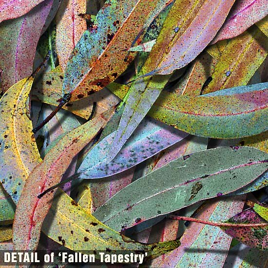 This is a detail of 'Fallen Tapestry' by Michael Critchley