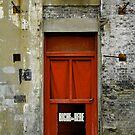 Red Door by LOREDANA CRUPI