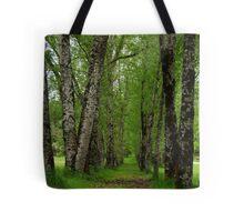 Silver Birch Trees, Otway Ranges Tote Bag