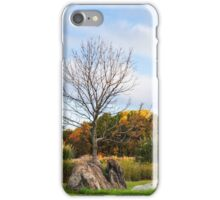 Pennsylvania Charm 3 iPhone Case/Skin