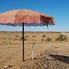 Shady Spot Oodnadatta Track Outback Australia by Joe Mortelliti