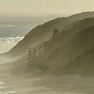Sea Spray 13th Beach,Bellarine Peninsula by Joe Mortelliti