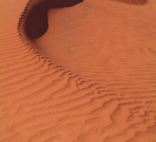 Sand Hill, Simpson Desert,N.T. by Joe Mortelliti
