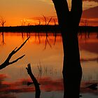 Red Reflections, Lake Fyans Grampians by Joe Mortelliti