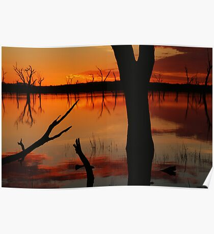 Red Reflections, Lake Fyans Grampians Poster
