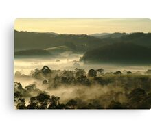 Valley Fog,Dollar, Gippsland Canvas Print