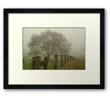 Foggy Morning, Macedon Ranges Framed Print