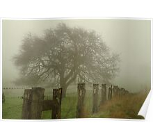 Foggy Morning, Macedon Ranges Poster