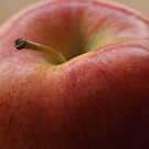 Apple Close-up by Stephen Thomas