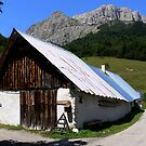 Barn-France 2006 by dopey