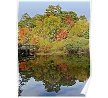 Fall Mirror Image        (1409111748VA) Poster