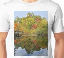 Fall Mirror Image        (1409111748VA) Unisex T-Shirt