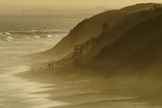 Walk the Dogs 13th Beach by Joe  Mortelliti