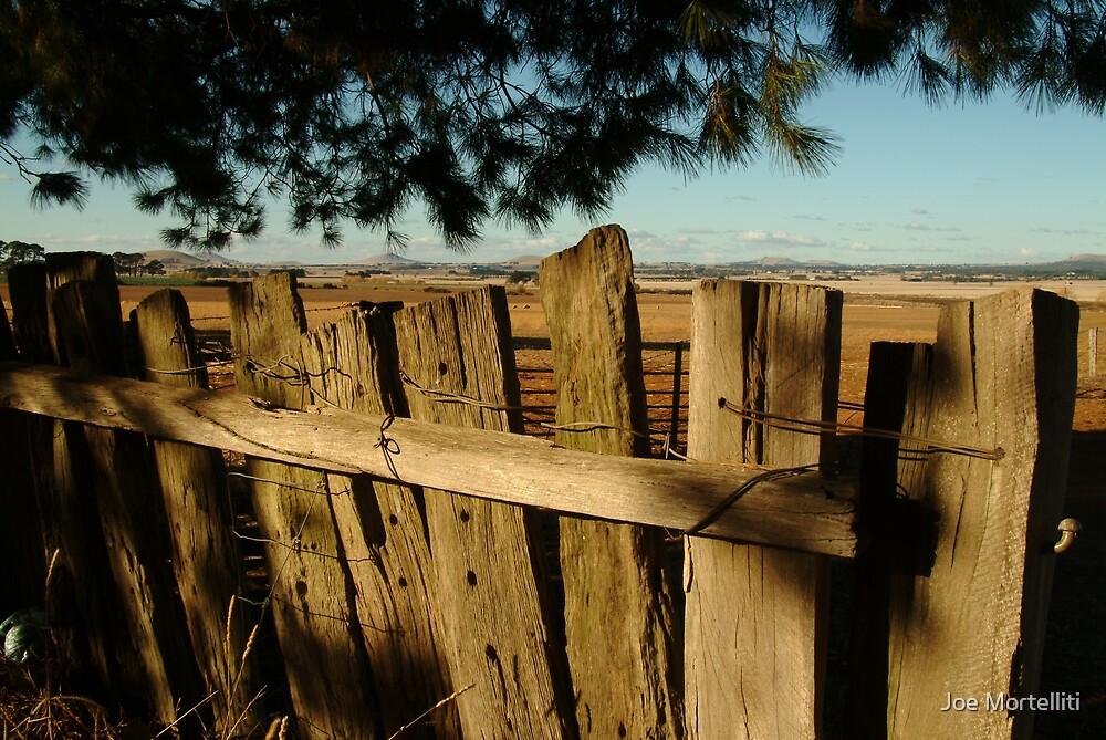 Ascot Farm Lands by Joe Mortelliti