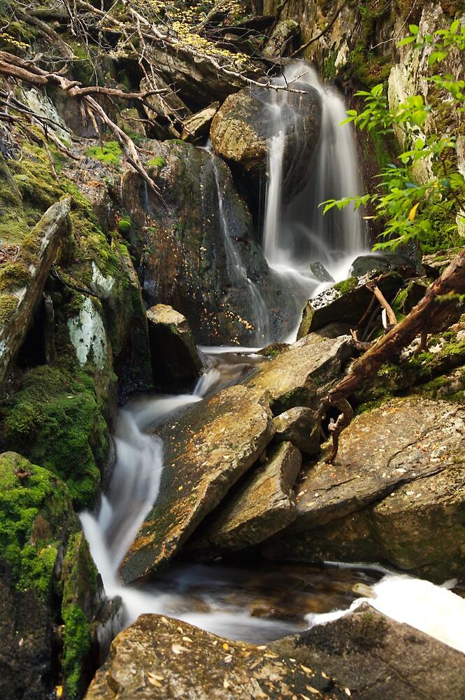 Waterfall Cradle Mountain Tasmania by Mark Williamson