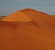 Sandhill North Simpson Desert,N.T. by Joe Mortelliti