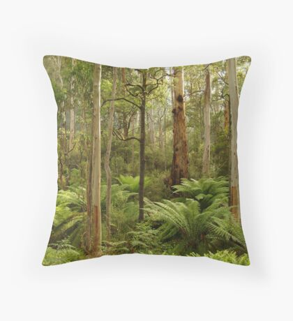 Morning Light Dawson City Haunted Stream High Country Throw Pillow