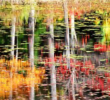 Autumn reflections by chrisg