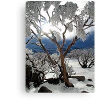 Snowgums 2 Canvas Print