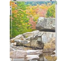 An Autumn View From the Creek iPad Case/Skin