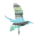 Wooden Seagull by surfculture