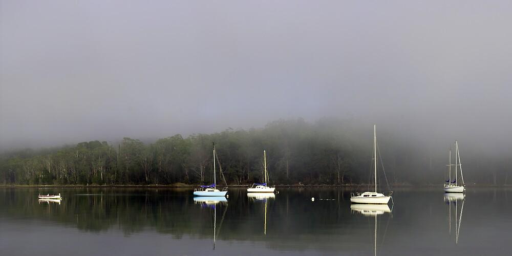 Bay of Tranquility by David Haviland