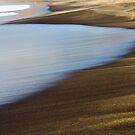 Golden Sands by Michael Eyssens