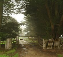 Farm Entrance by Joe Mortelliti