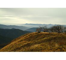 Top of Mt Blue Rag,High Country Photographic Print
