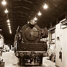In the sheds by DavidsArt