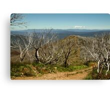 View from Mt Blue Rag,High Country Canvas Print