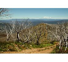 View from Mt Blue Rag,High Country Photographic Print