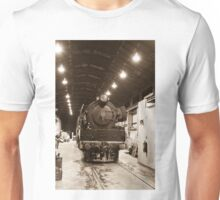 0829 In the sheds Unisex T-Shirt