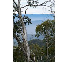 High Country Fog Layers Photographic Print