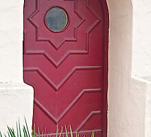 A Red Door by John Butler