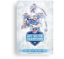 2013 AFC South Champions - Indianapolis Colts Metal Print