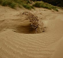 Patterns in the Sand by Ivan Kemp