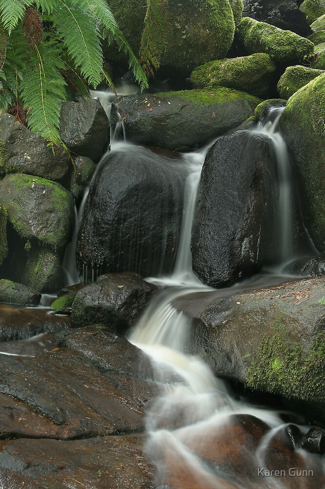 Murrindindi Falls  by Karen Gunn