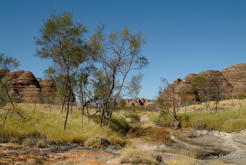 Bungle Bungles,Outback W.A. by Joe Mortelliti