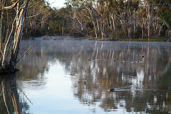 Pleasant Creek, Stawell by Joe Mortelliti