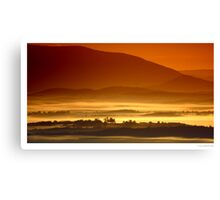 Dandenong Ranges Canvas Print