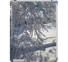 Winter Wonderland  iPad Case/Skin