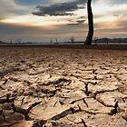The Big Dry by David Haviland