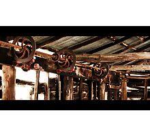 Shearing Days Photographic Print