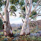 Brachina Gorge, Heysen Range Region by Susan Borgas