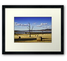 Make Hay While the Sun Shines Framed Print