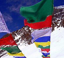 Mountain Top Prayers by Diane