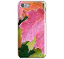 Canadian Autumn Maple Leaves iPhone Case/Skin
