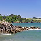 Rocks off Trebah Beach, Cornwall by Rod Johnson