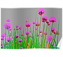 Blazing Chives Poster